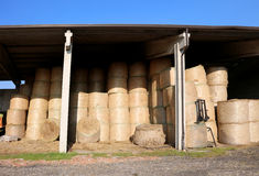 Deposit bale of dry hay in the farm shed Stock Image