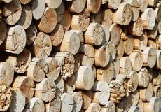 Deposito di legname con i bei pezzi dei ceppi per il camino Immagini Stock Libere da Diritti