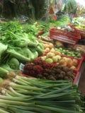 Deposito di verdure degli agricoltori Immagine Stock