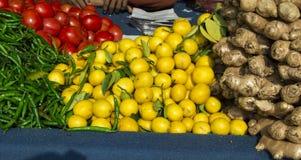 Deposito freddo del limone del pomodoro Immagine Stock