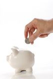 Deposits coin in piggy bank Royalty Free Stock Image