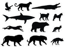 Depredadores ilustración del vector