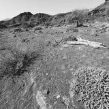 Depresión y vacío en blanco y negro imagen de archivo