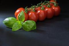 Depresja klucz strzelał pomidory z liściem basil Zdjęcie Royalty Free