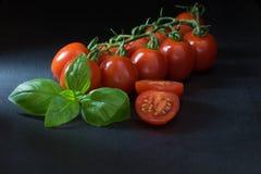 Depresja klucz strzelający krzaków pomidory, pokrojony pomidor i basil, Obrazy Stock