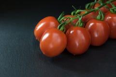 Depresja klucz strzelający pomidory Zdjęcie Royalty Free