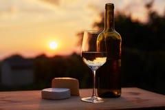 Depresja kluczowy wizerunek, szkło biały wino z butelką fotografia royalty free