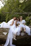 Depressed brides Stock Photography