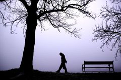 Depressed in Fog. A person walking alone in thick fog Royalty Free Stock Photos