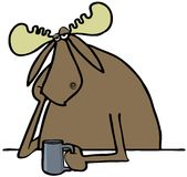 Depressed moose drinking coffee Royalty Free Stock Images