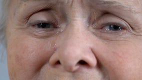 Depressed rynkig hög kvinnlig som gråter och ser kameran, framsidacloseup arkivfilmer