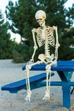 Depressed skeleton sits sadly on a picnic table