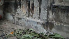 Depressing abandoned house interior stock footage