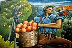 Depression Era Peach Harvest In Colorado Royalty Free Stock Images