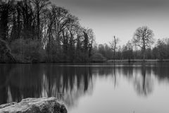 Depression. Lake and trees in black and white Royalty Free Stock Images