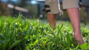 Depressione di camminata della donna l'erba bagnata a piedi nudi archivi video