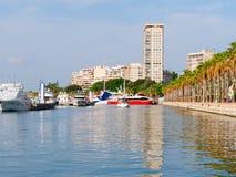 Deptak drzewka palmowe w Alicante Widok miasto i port Hiszpania Zdjęcie Royalty Free