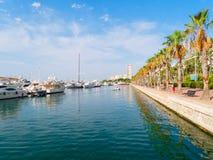 Deptak drzewka palmowe w Alicante Widok port Obrazy Stock
