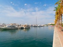 Deptak drzewka palmowe w Alicante Widok port Hiszpania Fotografia Royalty Free