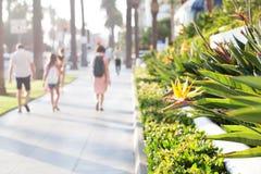 Deptak w Santa Monica, California Obrazy Royalty Free