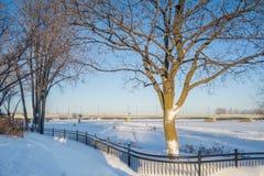 Deptak zimy scena obok rzeki Zdjęcia Royalty Free