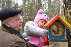 Der ältere Mann mit der Enkelin setzte Körner in eine Vogelgebühr ein lizenzfreie stockfotografie