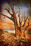 Der älteste Baum Stockfotografie