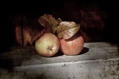Der Äpfel Leben noch Stockfotografie