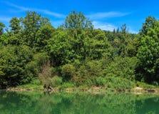 Der Aare-Fluss in der Schweiz im Sommer Lizenzfreie Stockbilder