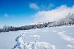Der Abdruck auf Schneefeld und blauem Himmel Stockfotografie