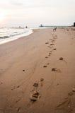 Der Abdruck des Hundes auf dem Strand Lizenzfreies Stockbild