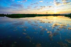 Der Abendsonnenuntergang auf dem See Lizenzfreie Stockfotografie