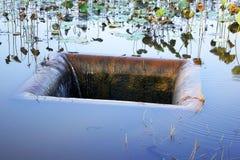 Der Abfluss hat ein Stückchen des Gras-bedeckten Rückstands Stockfotos