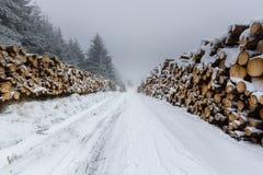 Der abgedeckte Schnee meldet eine Fernspur an Lizenzfreies Stockfoto