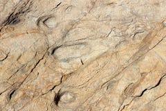 Der abgefressene Felsen Stockbilder