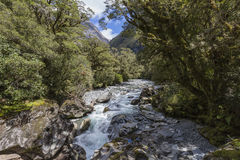 Der Abgrund (Fiordland, Südinsel, Neuseeland) Stockbilder