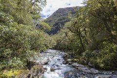 Der Abgrund (Fiordland, Südinsel, Neuseeland) Stockfotos