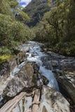 Der Abgrund (Fiordland, Südinsel, Neuseeland) Lizenzfreies Stockbild