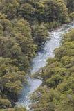Der Abgrund (Fiordland, Südinsel, Neuseeland) Lizenzfreie Stockfotos