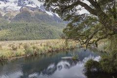 Der Abgrund (Fiordland, Südinsel, Neuseeland) Stockbild