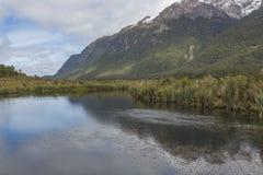 Der Abgrund (Fiordland, Südinsel, Neuseeland) Stockfotografie