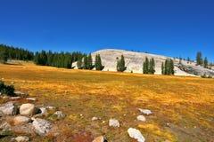 Der Abhang im Herbstpark Yellowstone Lizenzfreies Stockfoto