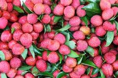 Der Abschluss oben der roten Lichi Frucht. Stockbilder