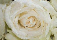 Der Abschluss oben des Blumenstraußes der frischen Rosen, selektiver Fokus Stockfotografie