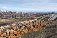 Der Abschnitt der Brennholzklotz Stockbild