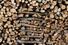 Der Abschnitt des Brennholzes Lizenzfreie Stockfotografie