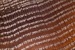 Der abstrakte braune Hintergrund in Form eines Netzes, kurzgeschores Holz am Oberlicht Stockbild