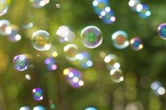 Der abstrakte Hintergrund von der Seifenblase in der Luft mit Natur Stockfoto