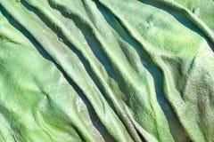 Der abstrakte holperige strukturierte Hintergrund der grünen Farbe Lizenzfreies Stockbild