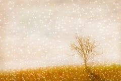 Der abstrakte Naturhintergrund Stockbild